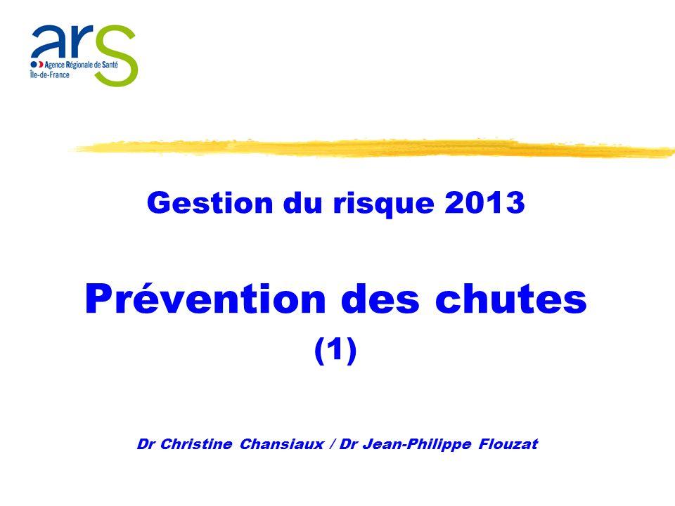 Gestion du risque 2013 Prévention des chutes (1) Dr Christine Chansiaux / Dr Jean-Philippe Flouzat