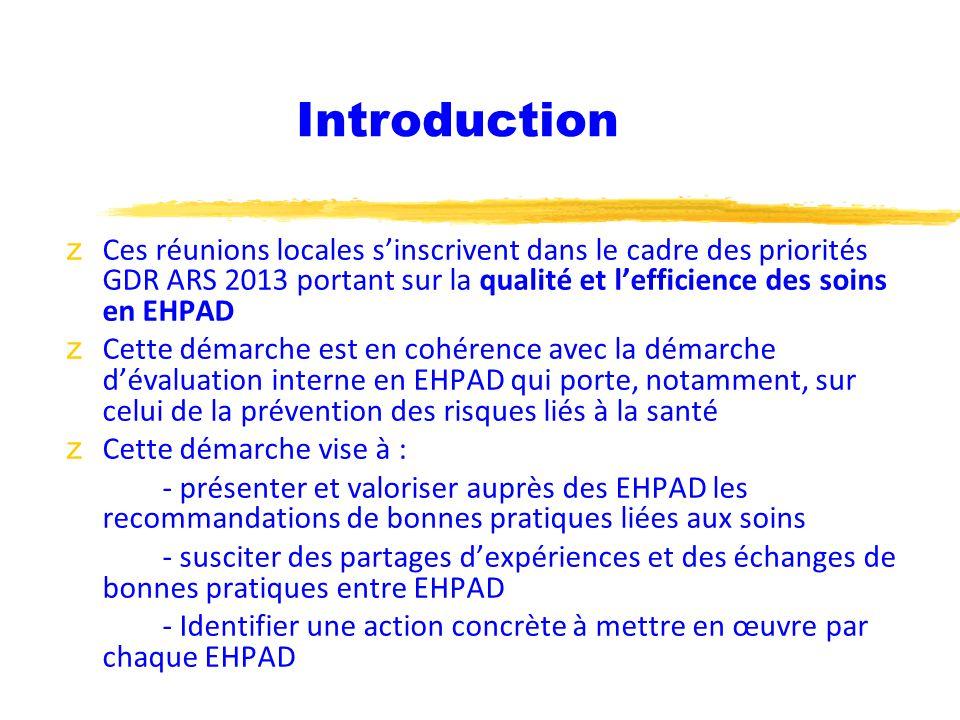 Introduction z Ces réunions locales sinscrivent dans le cadre des priorités GDR ARS 2013 portant sur la qualité et lefficience des soins en EHPAD z Ce