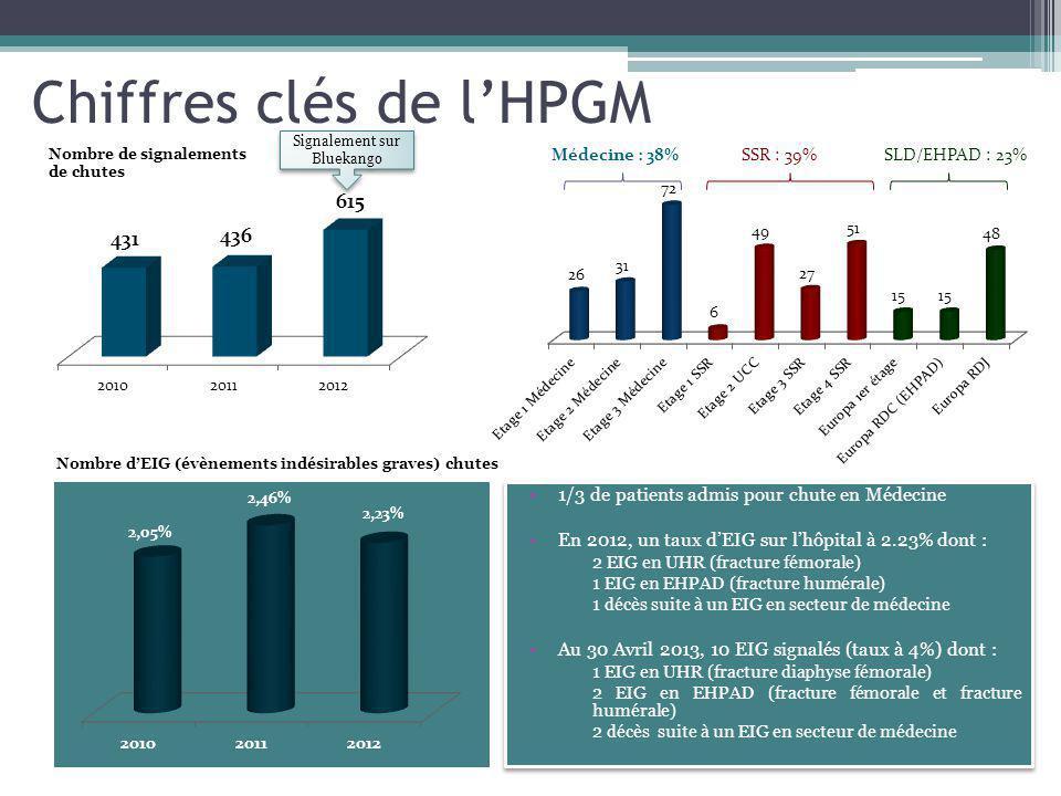 Chiffres clés de lHPGM 1/3 de patients admis pour chute en Médecine En 2012, un taux dEIG sur lhôpital à 2.23% dont : 2 EIG en UHR (fracture fémorale) 1 EIG en EHPAD (fracture humérale) 1 décès suite à un EIG en secteur de médecine Au 30 Avril 2013, 10 EIG signalés (taux à 4%) dont : 1 EIG en UHR (fracture diaphyse fémorale) 2 EIG en EHPAD (fracture fémorale et fracture humérale) 2 décès suite à un EIG en secteur de médecine 1/3 de patients admis pour chute en Médecine En 2012, un taux dEIG sur lhôpital à 2.23% dont : 2 EIG en UHR (fracture fémorale) 1 EIG en EHPAD (fracture humérale) 1 décès suite à un EIG en secteur de médecine Au 30 Avril 2013, 10 EIG signalés (taux à 4%) dont : 1 EIG en UHR (fracture diaphyse fémorale) 2 EIG en EHPAD (fracture fémorale et fracture humérale) 2 décès suite à un EIG en secteur de médecine Signalement sur Bluekango Nombre de signalements de chutes SSR : 39%SLD/EHPAD : 23% Nombre dEIG (évènements indésirables graves) chutes