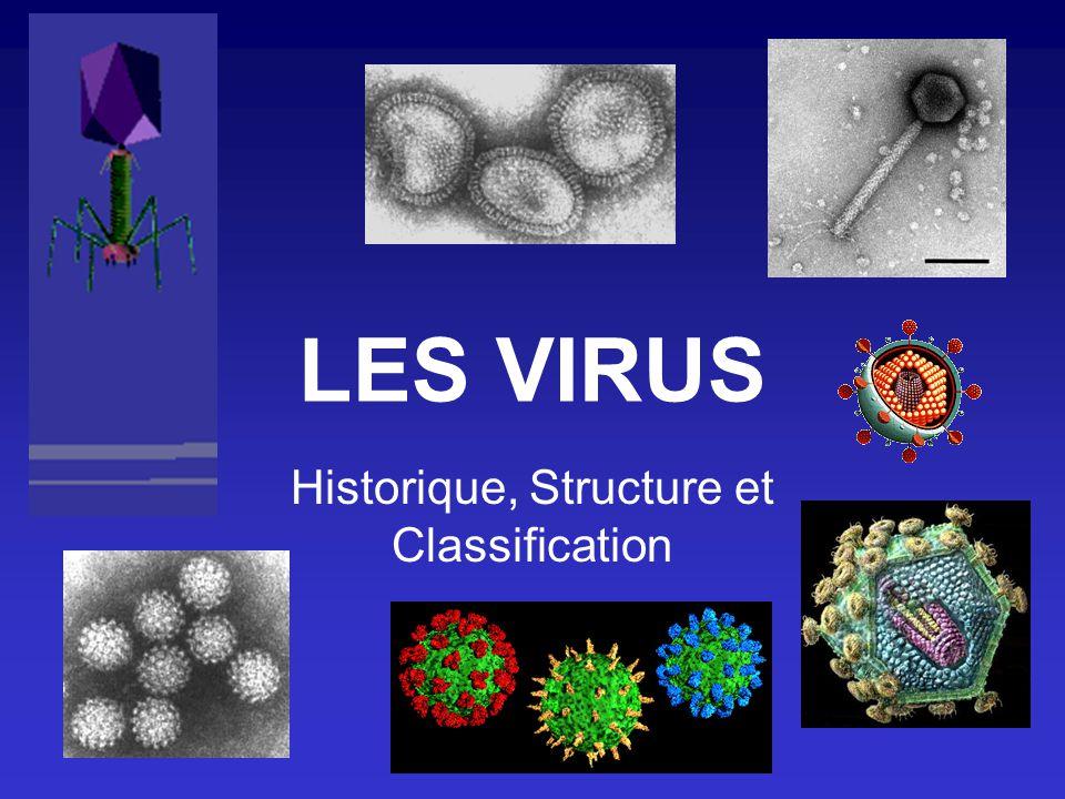 LES VIRUS Historique, Structure et Classification