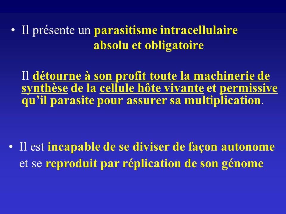 Il présente un parasitisme intracellulaire absolu et obligatoire Il détourne à son profit toute la machinerie de synthèse de la cellule hôte vivante e