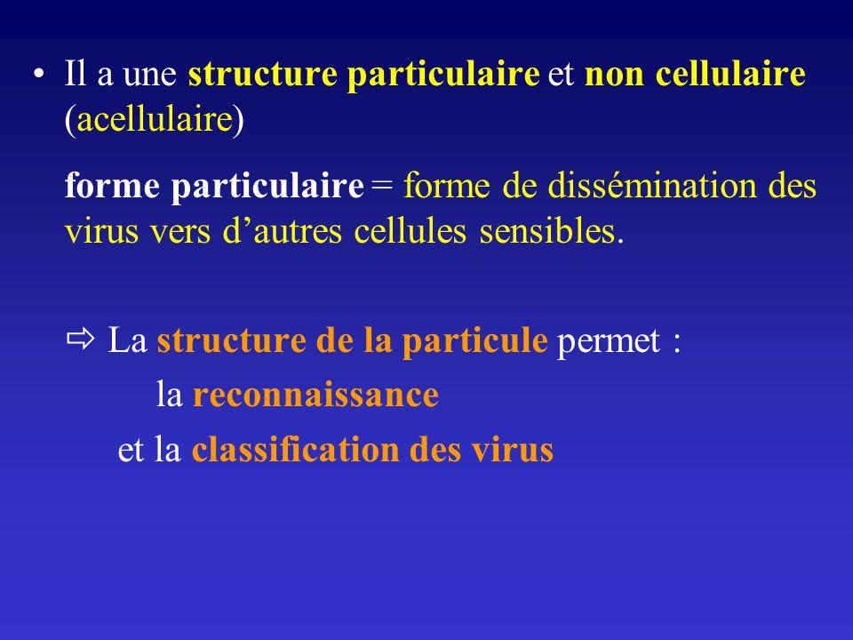 Il a une structure particulaire et non cellulaire (acellulaire) forme particulaire = forme de dissémination des virus vers dautres cellules sensibles.
