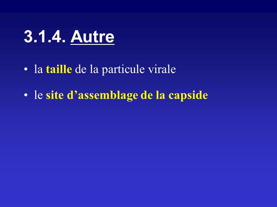 la taille de la particule virale le site dassemblage de la capside 3.1.4. Autre