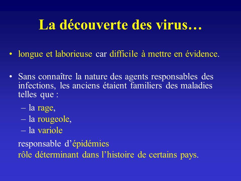La découverte des virus… longue et laborieuse car difficile à mettre en évidence. Sans connaître la nature des agents responsables des infections, les