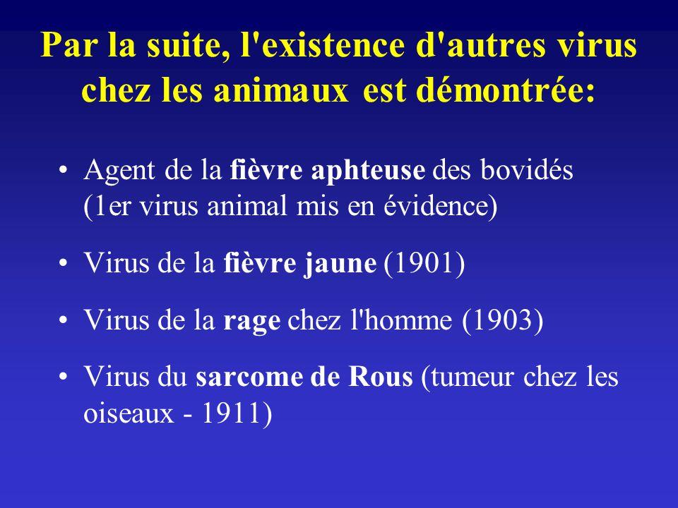 Par la suite, l'existence d'autres virus chez les animaux est démontrée: Agent de la fièvre aphteuse des bovidés (1er virus animal mis en évidence) Vi