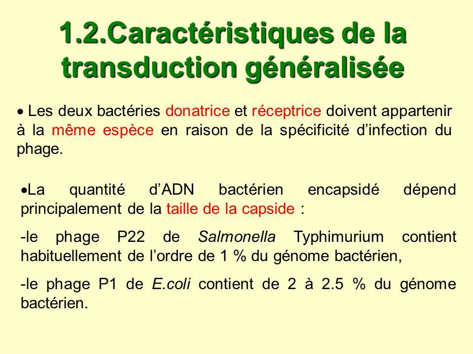 1.2.Caractéristiques de la transduction généralisée Les deux bactéries donatrice et réceptrice doivent appartenir à la même espèce en raison de la spé