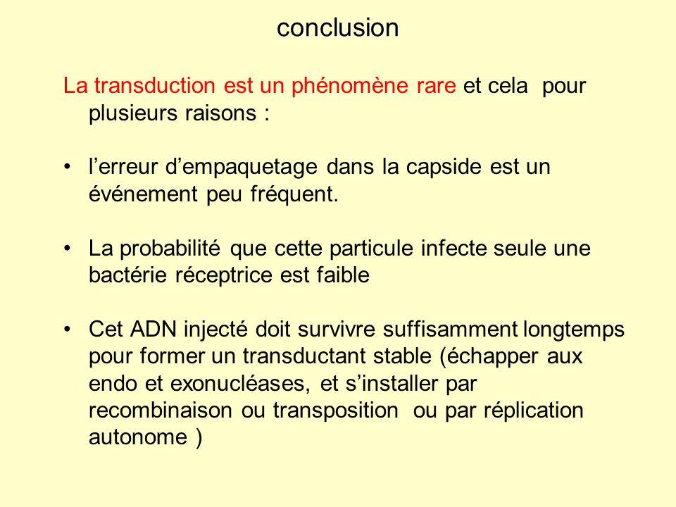 conclusion La transduction est un phénomène rare et cela pour plusieurs raisons : lerreur dempaquetage dans la capside est un événement peu fréquent.