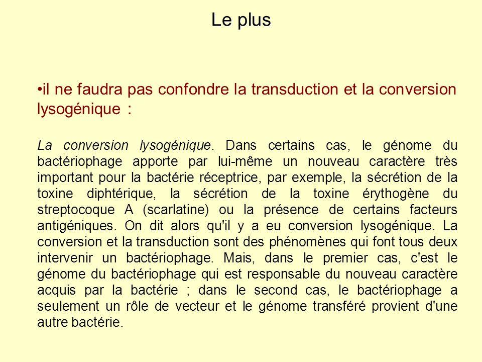 il ne faudra pas confondre la transduction et la conversion lysogénique : La conversion lysogénique. Dans certains cas, le génome du bactériophage app