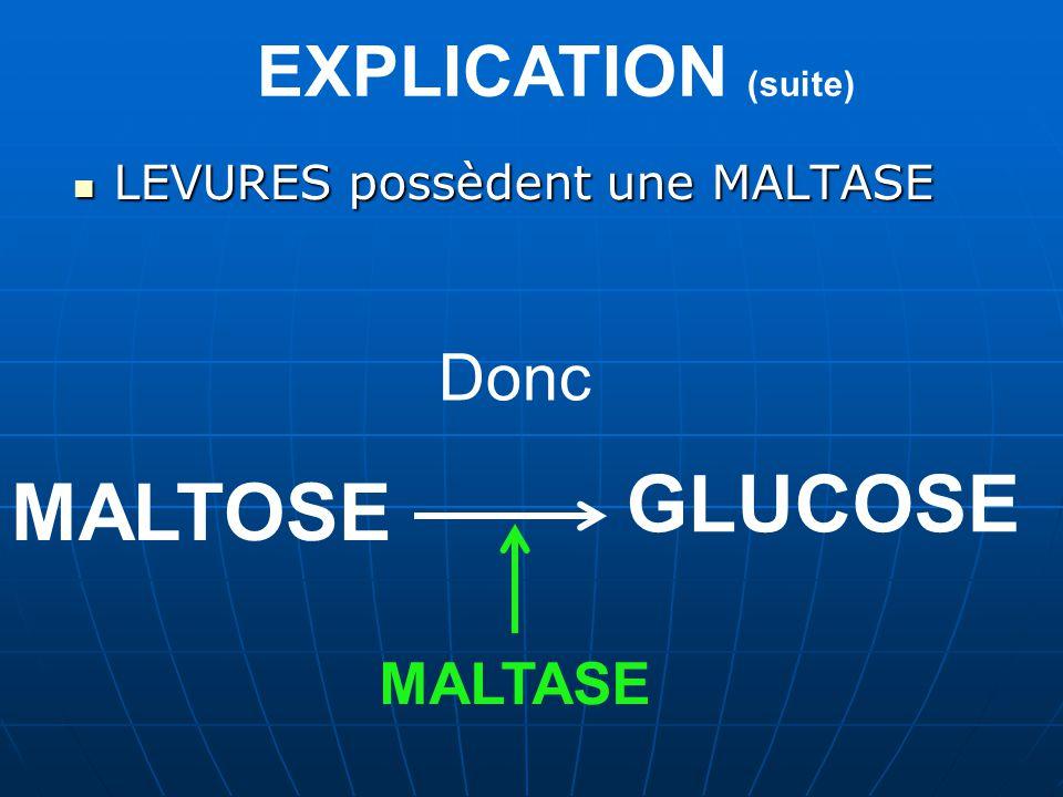 EXPLICATION (suite) LEVURES possèdent une MALTASE Donc MALTOSE MALTASE GLUCOSE