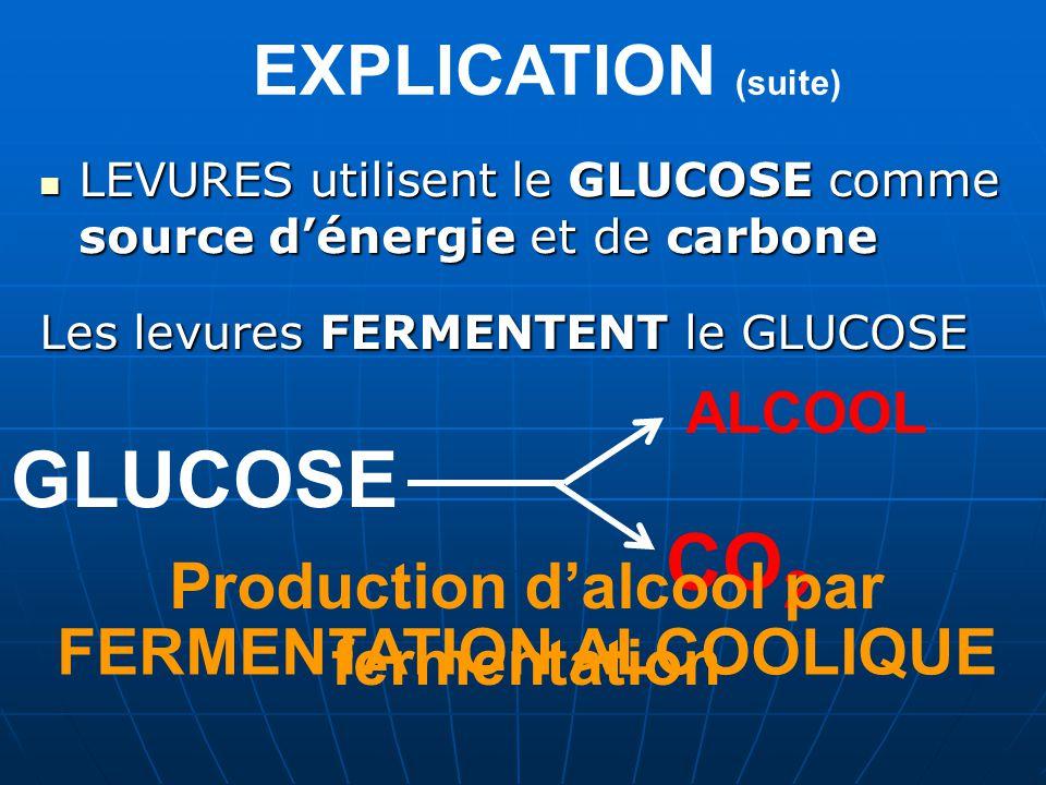 EXPLICATION (suite) LEVURES utilisent le GLUCOSE comme source dénergie et de carbone Les levures FERMENTENT le GLUCOSE GLUCOSE CO 2 ALCOOL Production