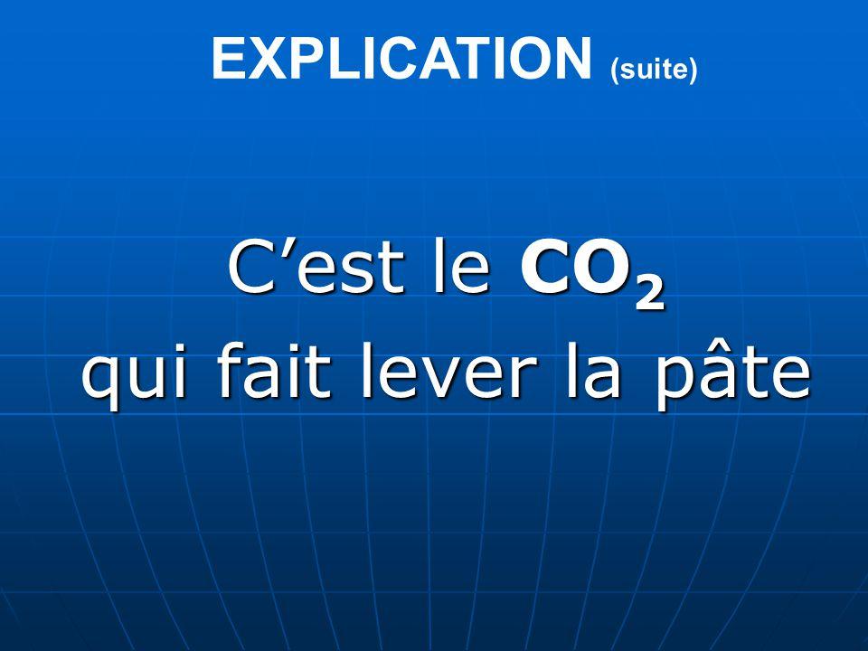 EXPLICATION (suite) Cest le CO2 qui fait lever la pâte