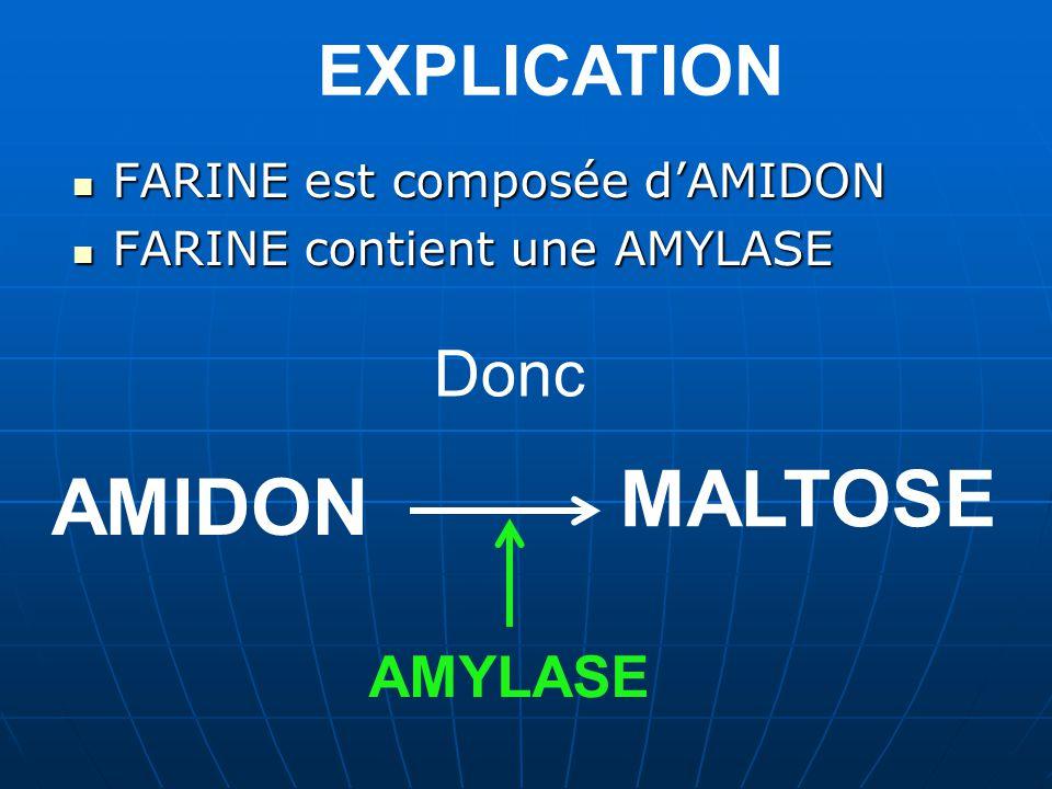 EXPLICATION FARINE est composée dAMIDON FARINE contient une AMYLASE Donc AMIDON AMYLASE MALTOSE