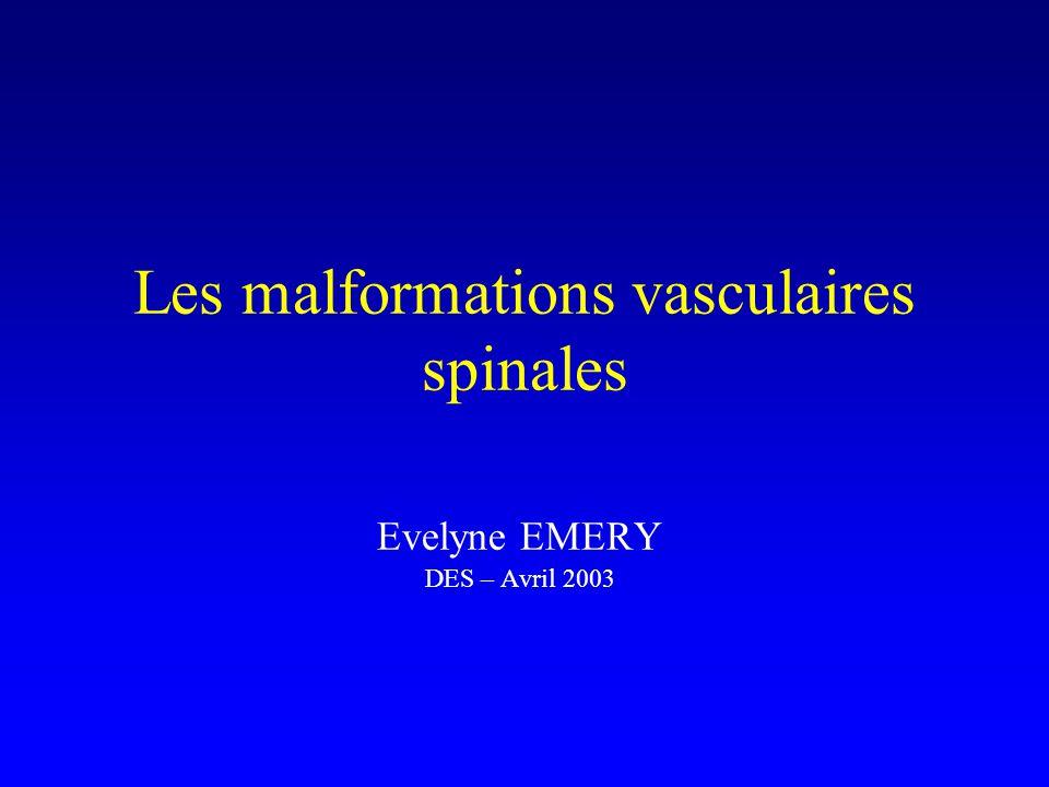 Classification (4) Type IV : FAV intradurales périmédullaires –à la partie antérieure de la ME –alimentée par l a.