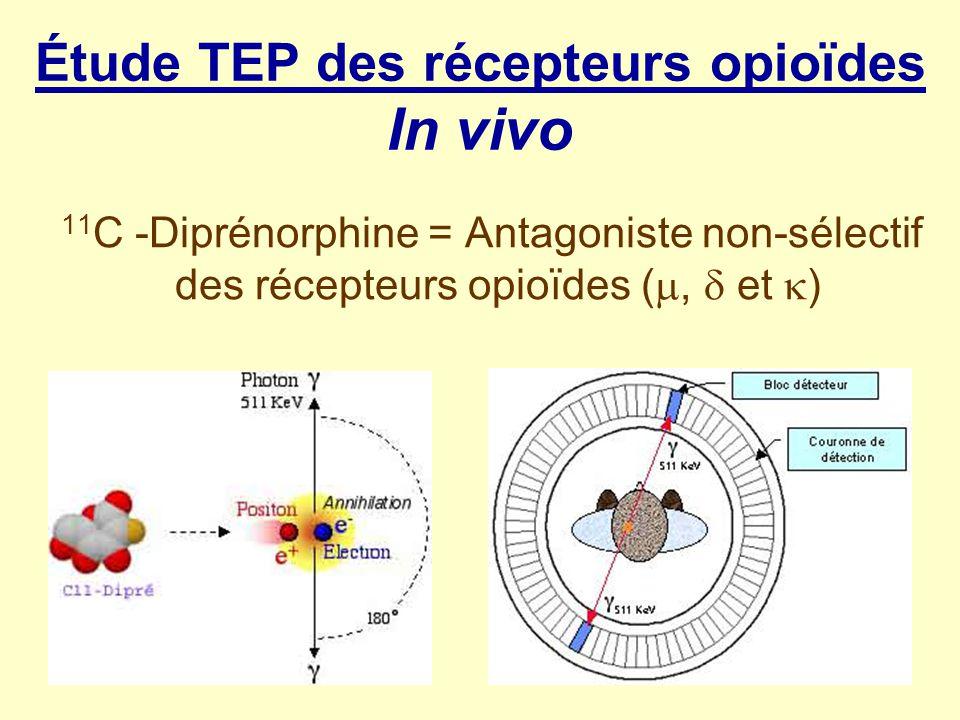 Étude TEP des récepteurs opioïdes In vivo 11 C -Diprénorphine = Antagoniste non-sélectif des récepteurs opioïdes (, et )