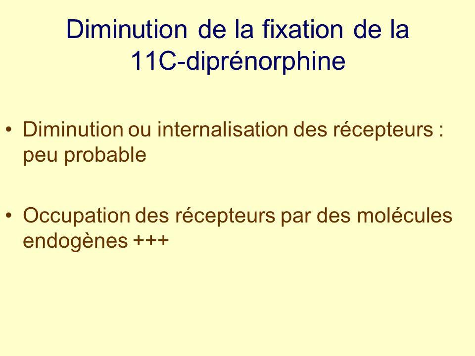 Diminution de la fixation de la 11C-diprénorphine Diminution ou internalisation des récepteurs : peu probable Occupation des récepteurs par des molécules endogènes +++