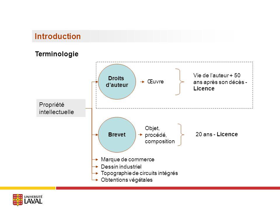 Conditions de protection : les caractéristiques de lœuvre Loi sur le droit d auteur, art.2.