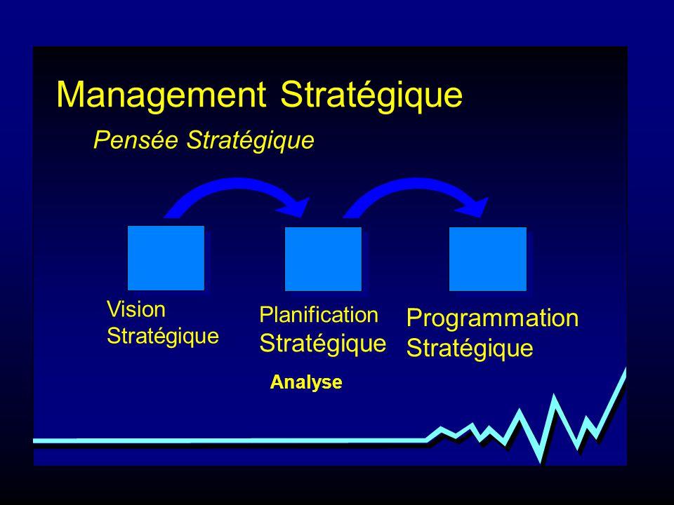 Management Stratégique Planification Stratégique Programmation Stratégique Analyse Pensée Stratégique Vision Stratégique Processus de création de stratégies Synthèse