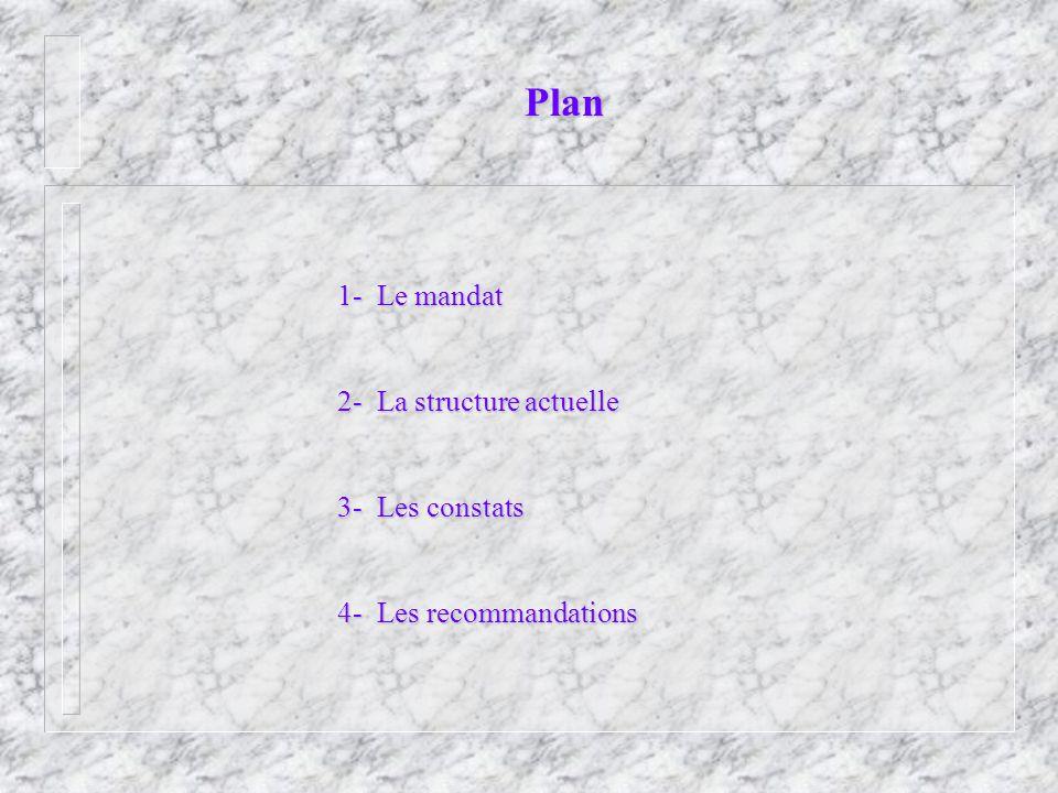 Plan 1- Le mandat 2- La structure actuelle 3- Les constats 4- Les recommandations