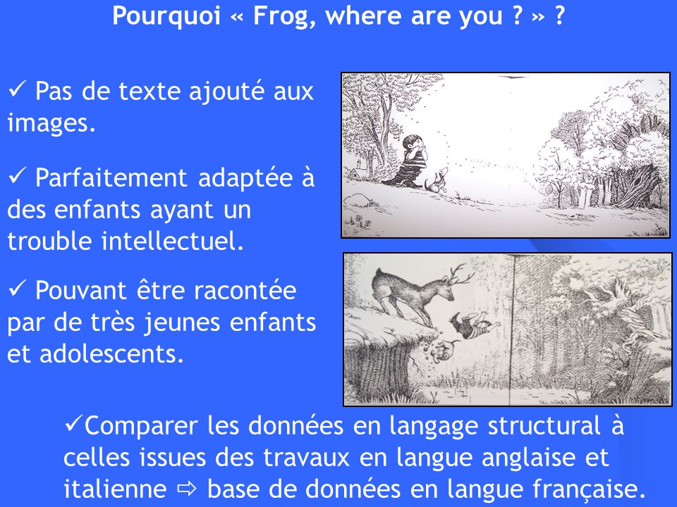 Comparer les données en langage structural à celles issues des travaux en langue anglaise et italienne base de données en langue française. Pourquoi «