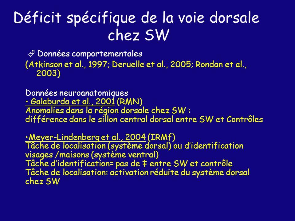 Données comportementales (Atkinson et al., 1997; Deruelle et al., 2005; Rondan et al., 2003) Données neuroanatomiques Galaburda et al., 2001 (RMN) Anomalies dans la région dorsale chez SW : différence dans le sillon central dorsal entre SW et Contrôles Meyer-Lindenberg et al., 2004 (IRMf) Tâche de localisation (système dorsal) ou didentification visages /maisons (système ventral) Tâche didentification= pas de entre SW et contrôle Tâche de localisation: activation réduite du système dorsal chez SW Déficit spécifique de la voie dorsale chez SW
