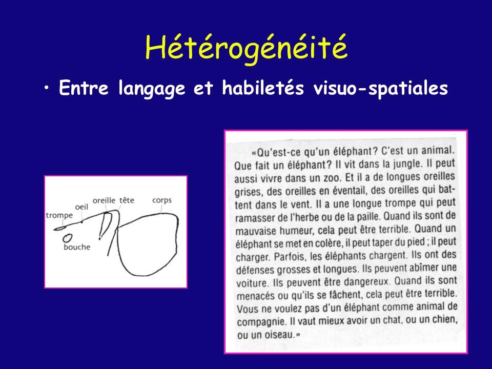 Hétérogénéité Dans le domaine visuo-spatial Traitement des visages ++ (Test de Benton) Dessins -- Cubes -- Orientation de lignes -- Test de Benton