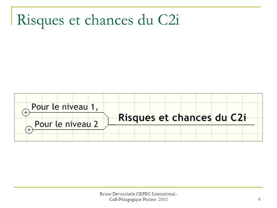Bruno Devauchelle CEPEC International - Café Pédagogique Poitiers 2005 9 Risques et chances du C2i