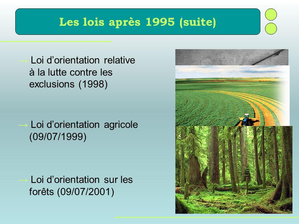 Les lois après 1995 (suite) Loi dorientation relative à la lutte contre les exclusions (1998) Loi dorientation agricole (09/07/1999) Loi dorientation