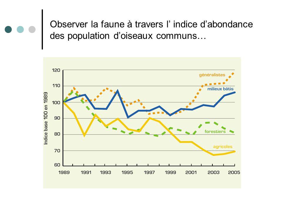 Observer la faune à travers l indice dabondance des population doiseaux communs…