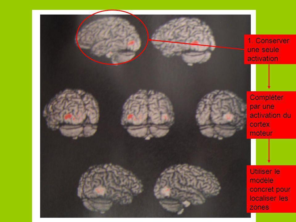 1. Conserver une seule activation Compléter par une activation du cortex moteur Utiliser le modèle concret pour localiser les zones