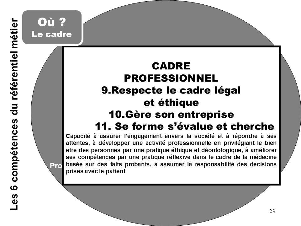 Professionnalisme Les 6 compétences du référentiel métier CADRE PROFESSIONNEL 9.Respecte le cadre légal et éthique 10.Gère son entreprise 11. Se forme