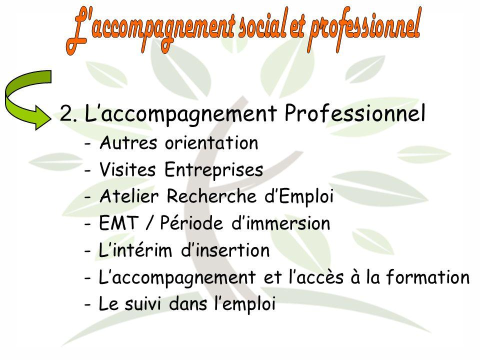 2. Laccompagnement Professionnel -Autres orientation -Visites Entreprises -Atelier Recherche dEmploi -EMT / Période dimmersion -Lintérim dinsertion -L
