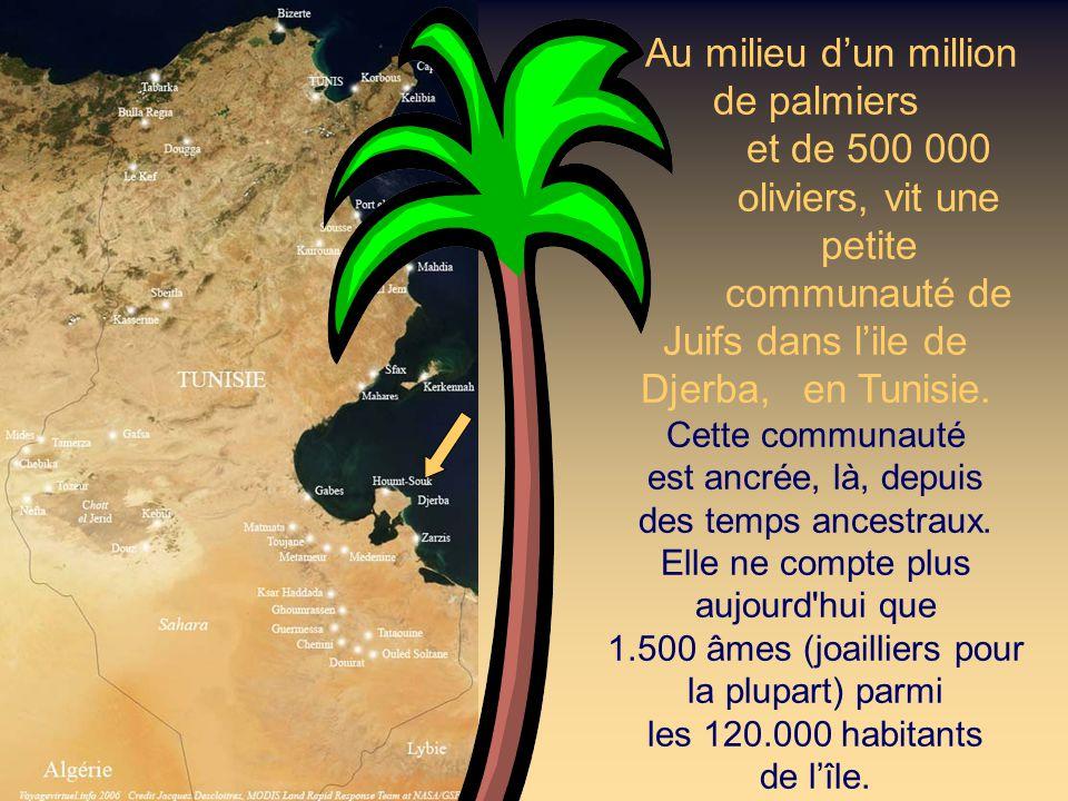 Au milieu dun million de palmiers et de 500 000 oliviers, vit une petite communauté de Juifs dans lile de Djerba, en Tunisie.