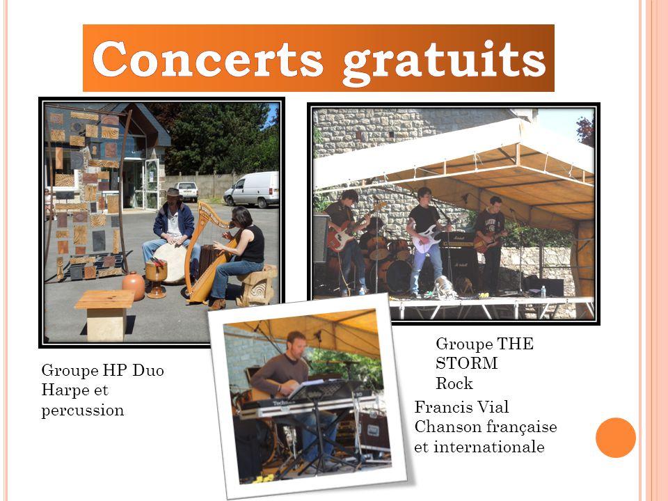 Groupe HP Duo Harpe et percussion Groupe THE STORM Rock Francis Vial Chanson française et internationale