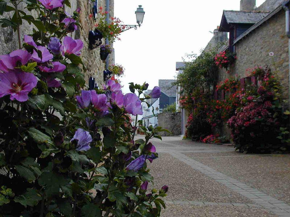 Le centre de Piriac Les vielles maisons fleuries