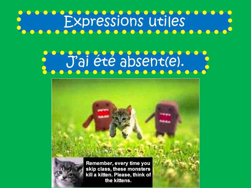 Expressions utiles Jai été absent(e).