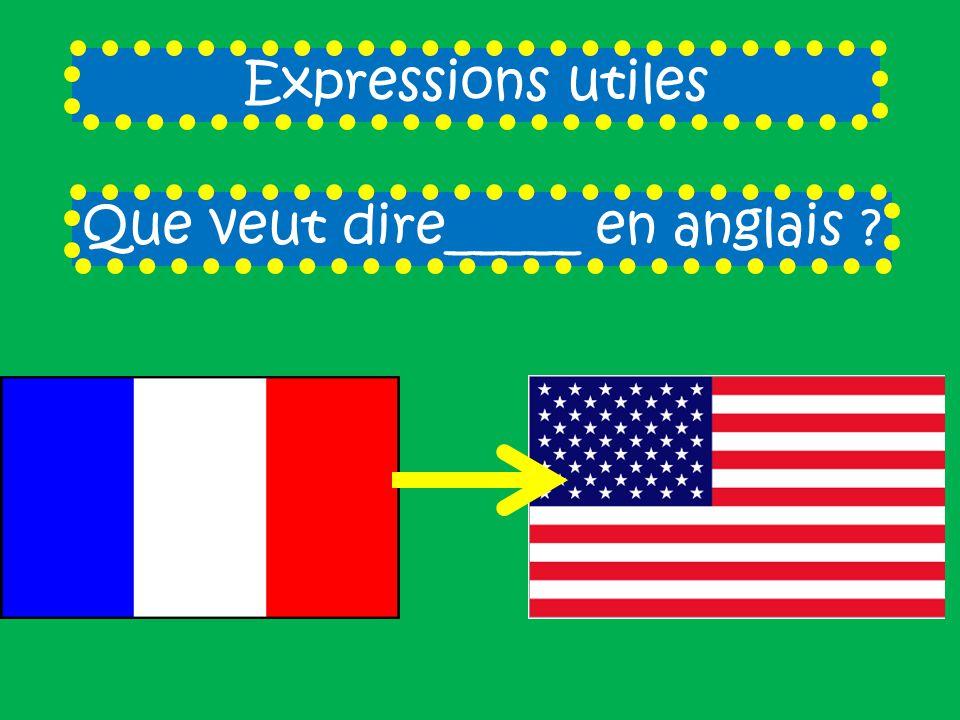 Expressions utiles Que veut dire_____ en anglais ?