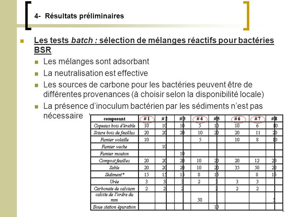 Thomas Genty15 4- Résultats préliminaires Les tests batch : sélection de mélanges réactifs pour bactéries BSR Les mélanges sont adsorbant La neutralisation est effective Les sources de carbone pour les bactéries peuvent être de différentes provenances (à choisir selon la disponibilité locale) La présence dinoculum bactérien par les sédiments nest pas nécessaire