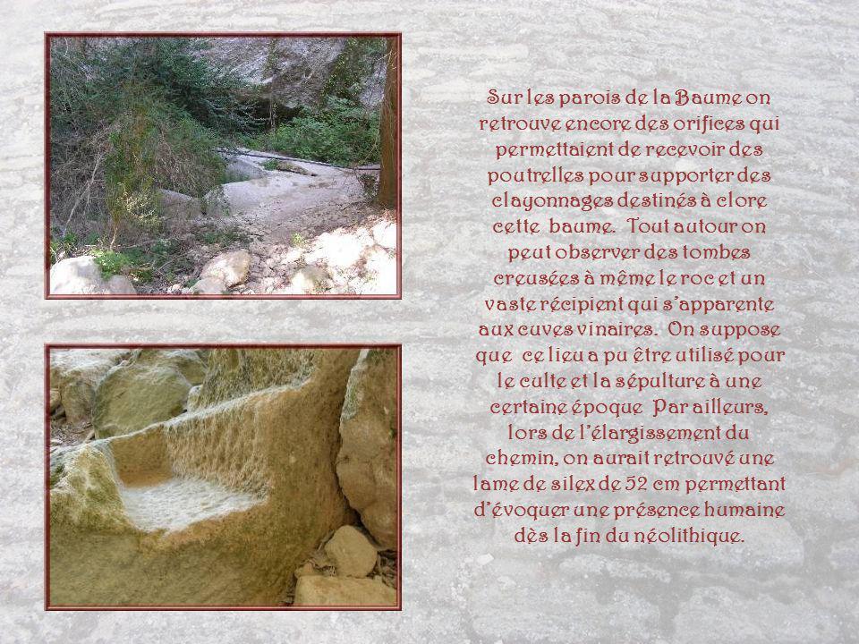 La Baume du Fort que lon traverse au début de notre promenade se trouve à labri dun immense surplomb rocheux de 35 m de hauteur.