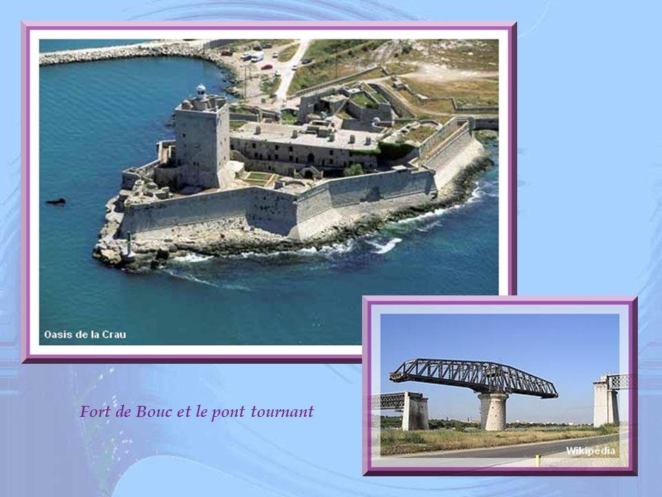 Fort de Bouc et le pont tournant