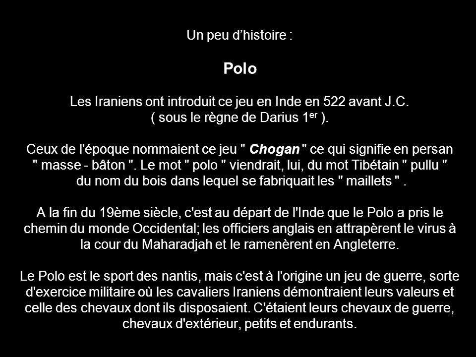 Un peu dhistoire : Polo Les Iraniens ont introduit ce jeu en Inde en 522 avant J.C. ( sous le règne de Darius 1 er ). Ceux de l'époque nommaient ce je