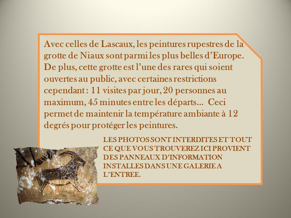 Avec celles de Lascaux, les peintures rupestres de la grotte de Niaux sont parmi les plus belles dEurope.
