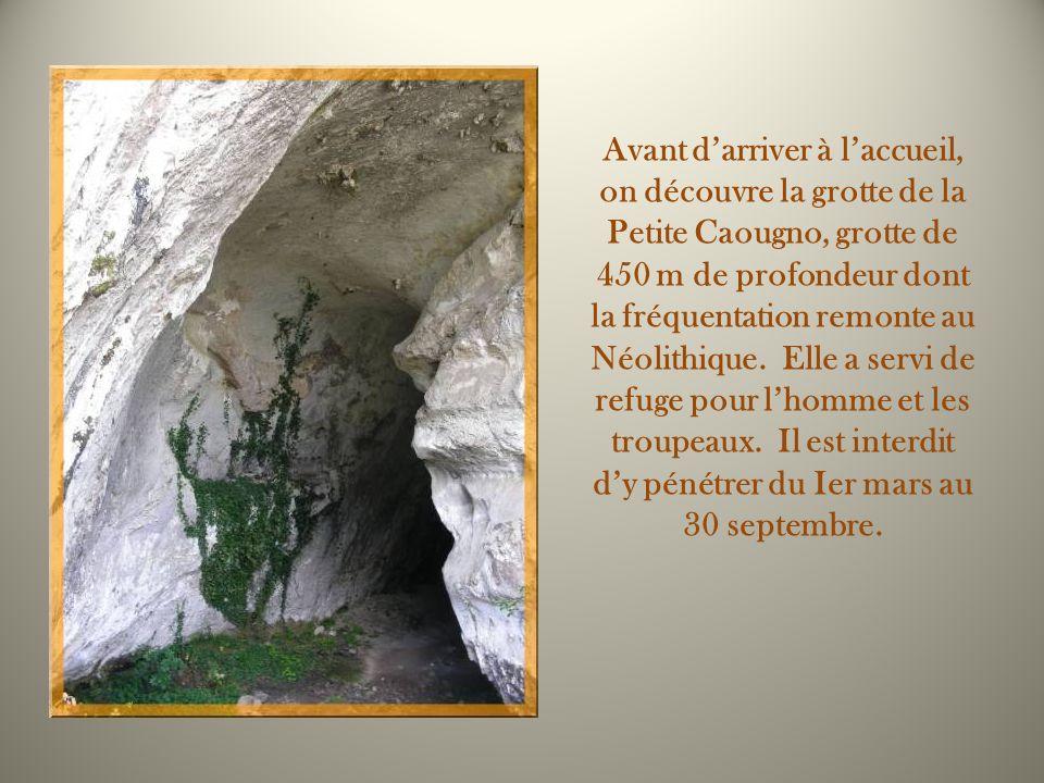 Avant darriver à laccueil, on découvre la grotte de la Petite Caougno, grotte de 450 m de profondeur dont la fréquentation remonte au Néolithique.