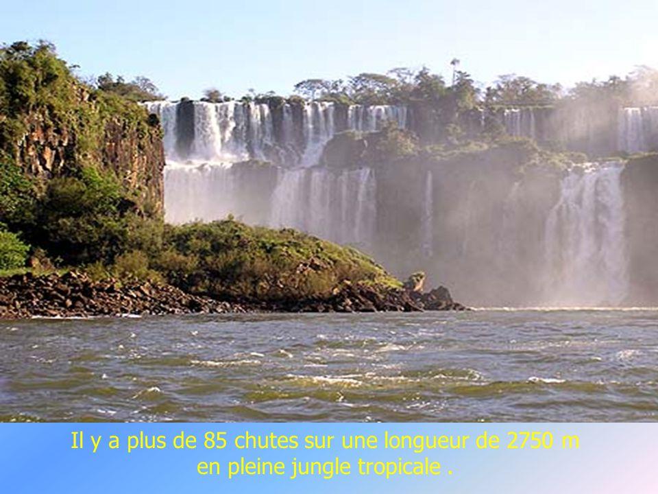 Les chutes d Iguazu, côté Argentin.