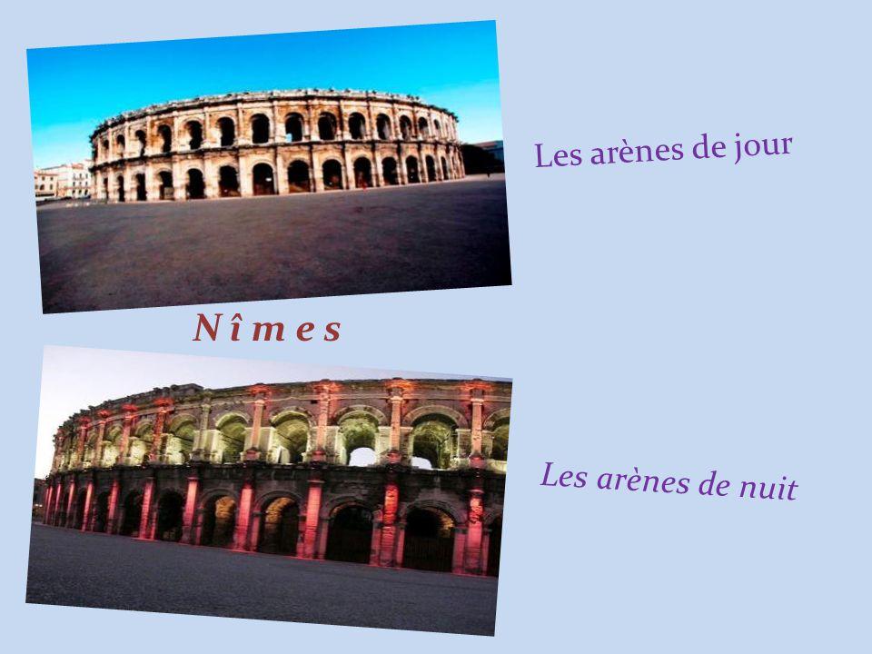 Photos du Net Musique de : Michel Pruvot Janvier 2009 F I N