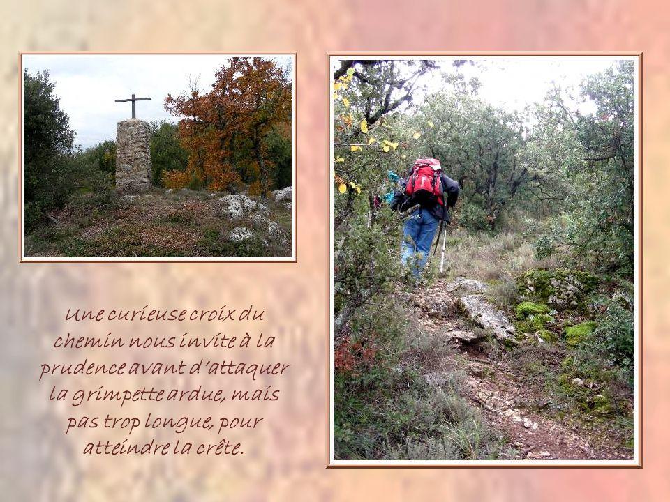 Une curieuse croix du chemin nous invite à la prudence avant dattaquer la grimpette ardue, mais pas trop longue, pour atteindre la crête.