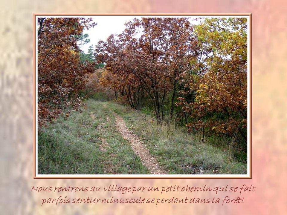 Le pique-nique se fait près de cette jolie chapelle qui émerge au-dessus dune vigne dont quelques feuilles rougeoient….