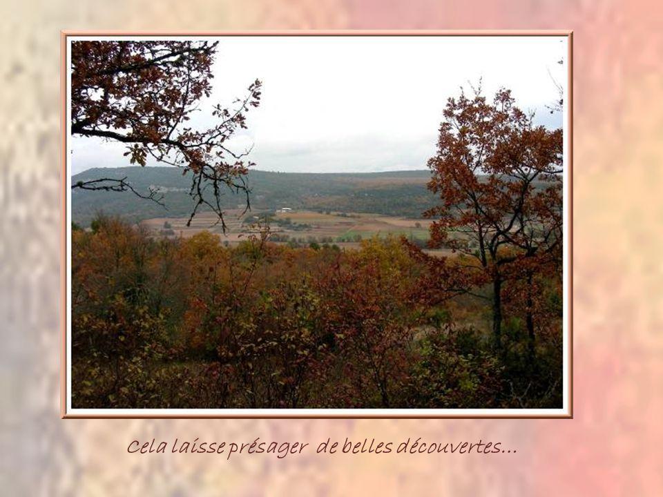 Au commencer, une jolie petite route et ce charmant oratoire qui semble nous inviter au silence pour bien profiter des merveilles environnantes.