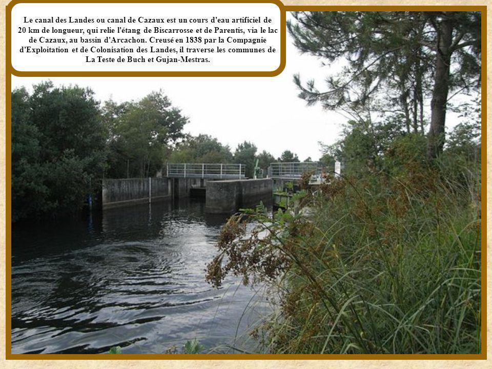 Le canal de Briare est un des plus anciens canaux de France et le premier de type canal à bief de partage. Avec les cinquante-quatre kilomètres de son