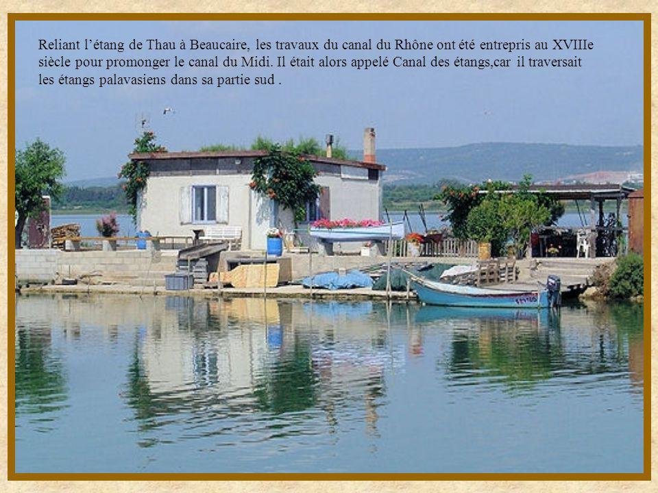Reliant létang de Thau à Beaucaire, les travaux du canal du Rhône ont été entrepris au XVIIIe siècle pour promonger le canal du Midi.