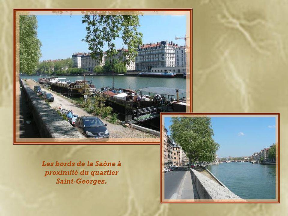 Les bords de la Saône à proximité du quartier Saint-Georges.
